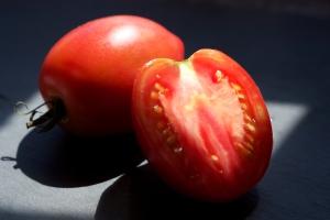 Mr. Fumarole Paste Tomato