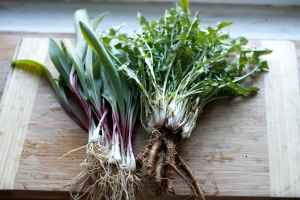 ramps and dandelion greens